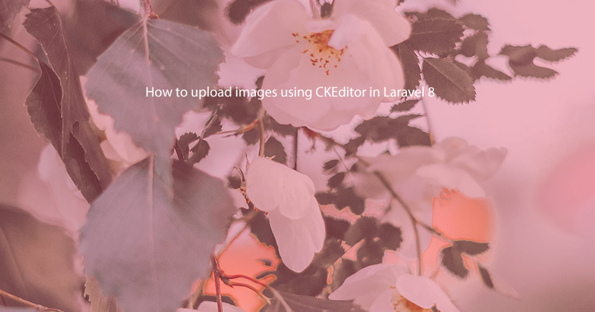 How to upload images using CKEditor in Laravel 8