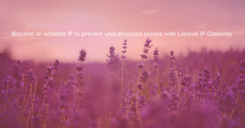 Blacklist or whitelist IP to prevent unauthorized access with Laravel IP Gateway