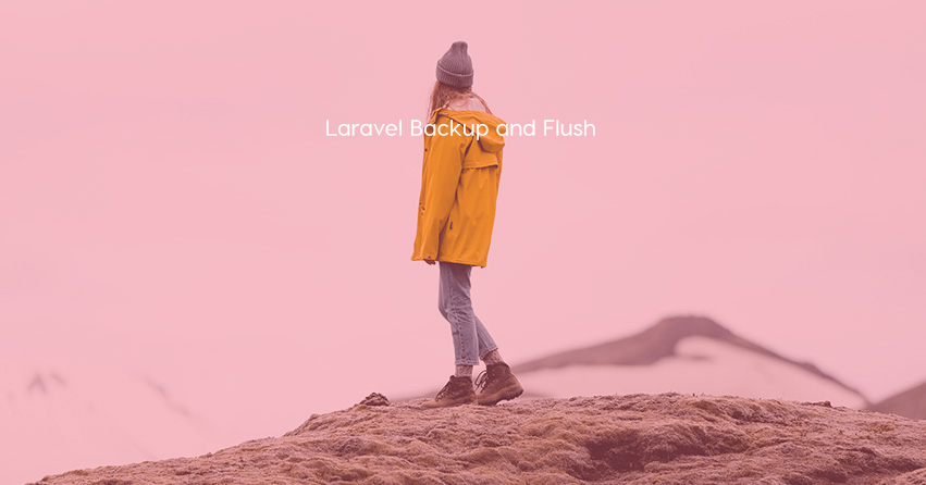 Laravel Backup and Flush