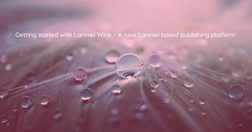 Getting started with Laravel Wink - A new Laravel based publishing platform
