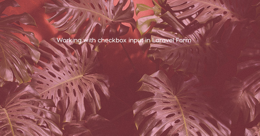 Working with checkbox input in Laravel Form