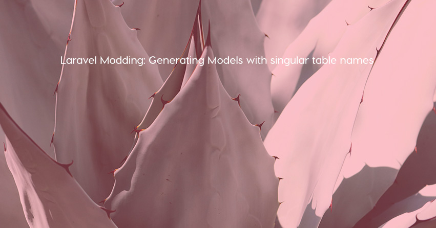 Laravel Modding: Generating Models with singular table names