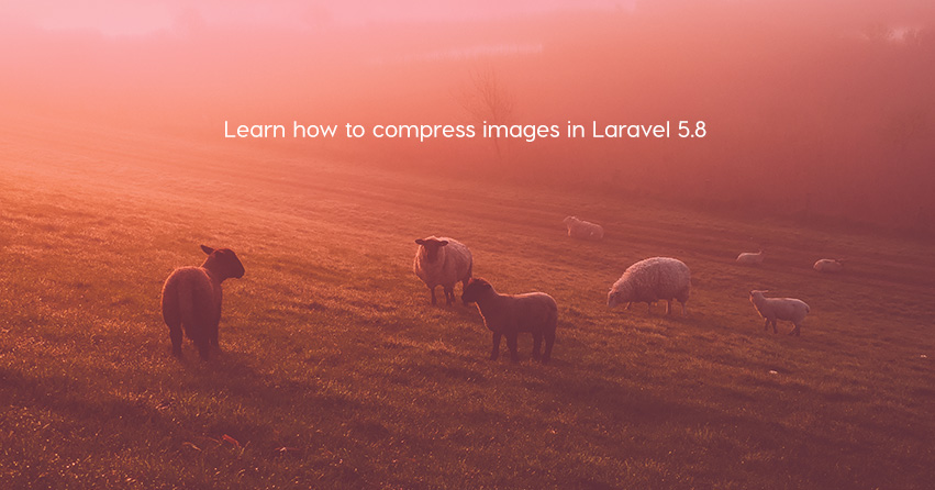 Learn how to compress images in Laravel 5.8
