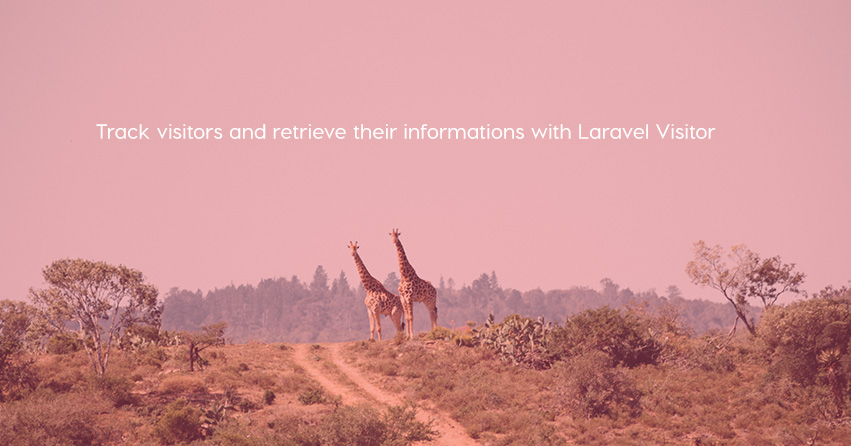 Track visitors and retrieve their informations with Laravel Visitor