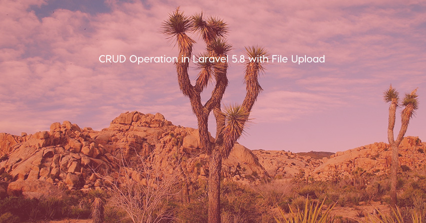 CRUD Operation in Laravel 5.8 with File Upload