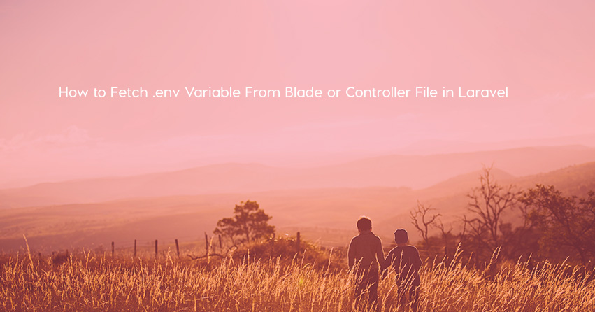 How to Fetch .env Variable From Blade or Controller File in Laravel