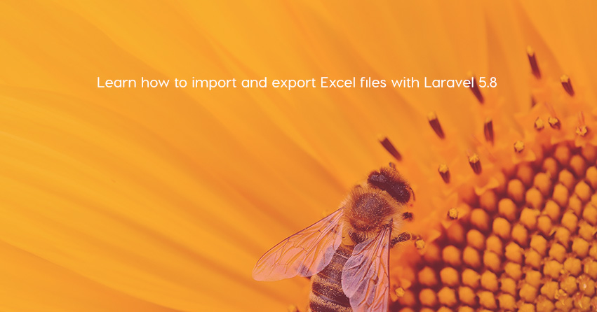 Learn how to import and export Excel files with Laravel 5.8