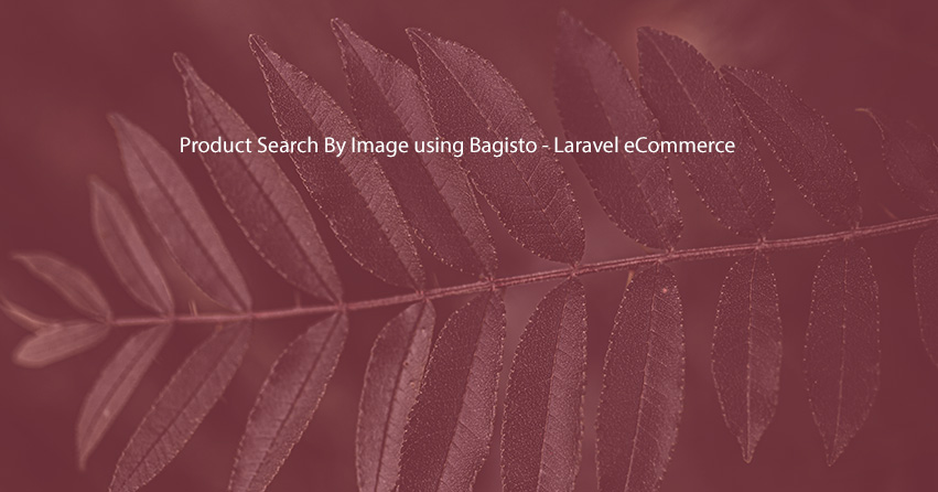Product Search By Image using Bagisto - Laravel eCommerce